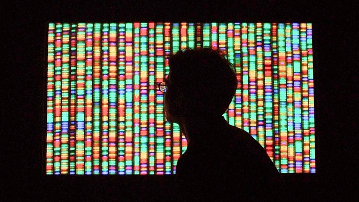 Shadow of a person's head in front of a screen showing DNA