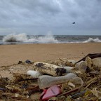 Plastic waste lies among other debris washed ashore on a beach in Sri Lanka.