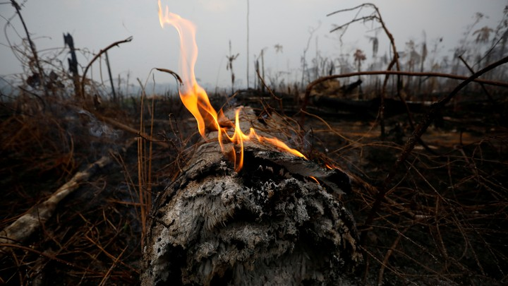 A tract of Amazon jungle is seen after a fire in Boca do Acre, Amazonas state, Brazil, on August 24, 2019.